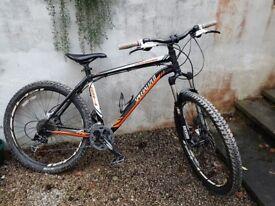 Specialized Rockhopper Mountain Bike, upgraded