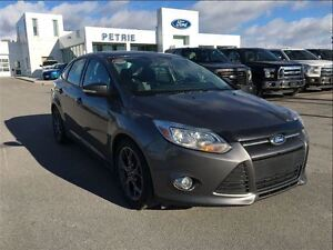 2014 Ford Focus SE - HEATED SEATS, BLUETOOTH