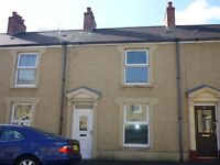 REFURBISHED HOUSE FOR RENT IN HAFOD,TWO DOUBLE BEDROOMS