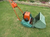 Petrol Lawnmower - Suffolk Colt