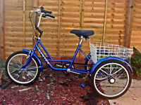 ADULTS TRICYCLE MODERN DESIGN SHMANO EQUIPPED V BRAKES BASKET