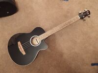 Fretless Electro Acoustic Bass Guitar