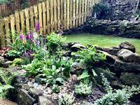 Hayden Gardening Services. North Leeds. CALL 07850 264 001