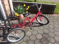 Concept Tri-Mantis 20 inch Tricycle - Good Condition - £100