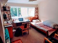 Double Bed Room Available-Short term