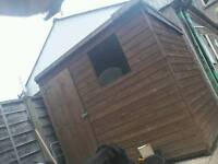 8x5 Shed