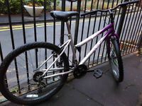 Bike for 30 pounds, fully working condition