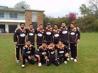 Falcons cricket club require new players of any age and skill