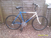 SPECIALISED ROCKHOPPER ONE OF MANY QUALITY BICYCLES FOR SALE
