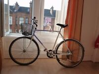 Pioneer Bicycle for sale