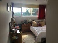 Massive Double Bedroom! Private Mews off Dalston Lane