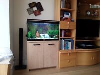 Aquarium and cabinet complete with all acessories for sale
