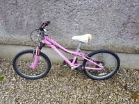 Girls Specialized mountain bike 5 -8 free spare wheels