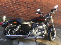 Harley Davidson XL 883 Superlow
