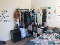 Double Bedroom to rent in spacious Stokey Flat with Garden