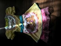 Goldilocks dress 6 year