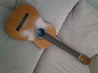 BM Clasico Guitar