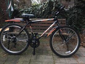 Bicycle-Mountain Bike