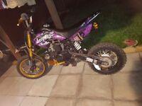 Pit bike £250