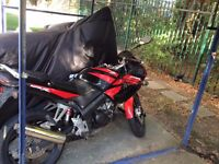 Honda CBR 125-R (2010). Fun bike!, great conditions, perfect for learners