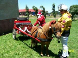Little red CART and HARNESS