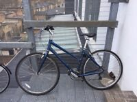 BICYCLE Ridgeback Motion in blue