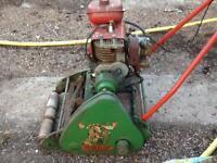 Suffolk colt lawnmower