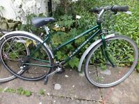 12 Speed Ladies Raleigh Town Bike Size 21 Ready to Ride