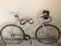 Python Atlas single speed / fixed gear bike 21in. frame