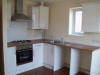 Lovely unfurnished 2 bedroom flat with garden