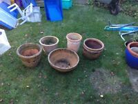5x terracotta plant pots for the garden