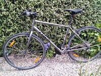 Trek hybrid bicycle
