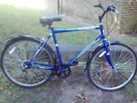Like new Professional Tourist Mens bike only £70