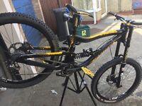 Downhill mountain bike, nukeprof scalp,