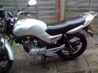 Excellent Yamaha YBR 125