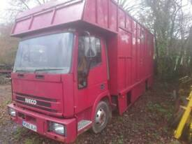 Iveco 7.5 ton horse lorry