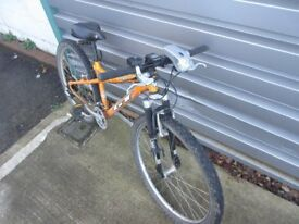 GT mountain Bike Kids Small Good condition, ready to ride
