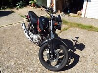 Yamaha YBR 125cc PROJECT BIKE