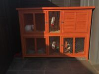 2 rabbits and hutch