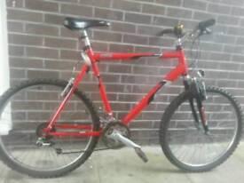 £40 ono for mens mountain bike