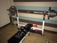 Olympic weight bench and weights