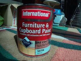 International Furniture & Cupboard Paint - Willow ( Teal )