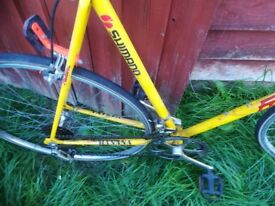Falcon Banana drop handle racing bike