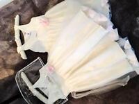 BRAND NEW FLOWER GIRL DRESSES X 2