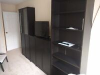 Billy Bookcase / bookshelve and Poang Chairs Ikea