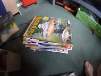 A ton of old carp fishing and fly fishing magazines