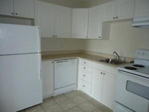 Bright, Spacious, 3 Bdrm! Just $995, Won't Last!