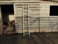 Aluminium ladder, about 2 meters, 8 rungs