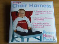 Baby's chair harness