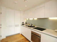 Stunning 2 Bedroom Penthouse within a private development short walk from Finsbury Park Tube Station